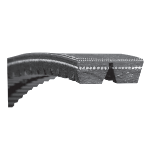 Emerson (Browning) 2GBB120 2-Groove Belt