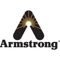 Armstrong International A9931 Bolt & Nut Set