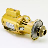 Bell & Gossett 1EF000LF In-Line Mounted Maintenance Free Centrifugal Pump
